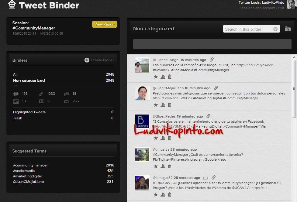 Tweet Binder Ludiviko Pinto Community Manager
